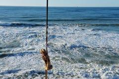 风暴发掘在以色列海岸的罗马时代雕象 免版税库存图片