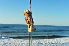 风暴发掘在以色列海岸的罗马时代雕象 免版税库存照片