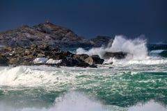 风暴在海滩挥动在Lofoten群岛,冬时的挪威 免版税库存照片