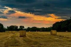风暴的干草 库存照片