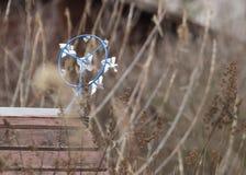 风标 图库摄影