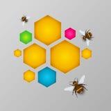 风格化五颜六色的蜂窝用蜂蜜和蜂 库存照片