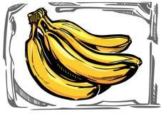 风格化传染媒介香蕉 库存照片