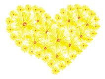 风格化心脏绘与春天黄色花 免版税库存图片
