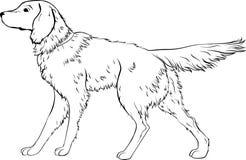 风格化狗线艺术 艺术性的动物剪影 免版税库存照片