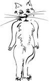 风格化猫 免版税库存照片