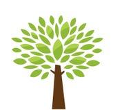 风格化结构树 库存图片