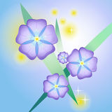 风格化美好的紫罗兰 免版税图库摄影