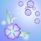 风格化美好的紫罗兰 免版税库存照片