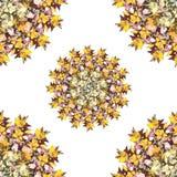 风格化花卉无缝的样式 图库摄影