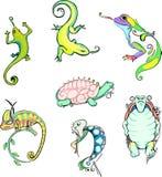 风格化蜥蜴和乌龟 免版税库存照片