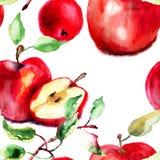风格化水彩苹果例证 免版税图库摄影