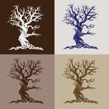 风格化结构树 向量例证