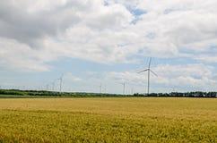 风的领域和风轮机在黄色fllowers附近种田,调遣, 库存照片