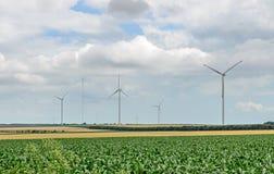 风的领域和风轮机在黄色fllowers附近种田,调遣, 库存图片