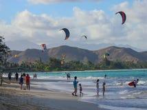 风筝冲浪在Lanikai海滩 免版税图库摄影