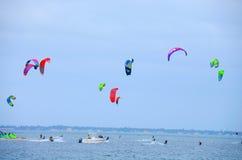 风筝冲浪的比赛坦帕湾佛罗里达 免版税库存图片