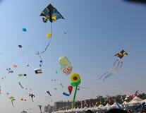 风筝的不同的类型-第29个国际风筝节日2018年-印度 库存图片