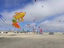 风筝节日 免版税图库摄影