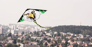 风筝飞行-白头鹰 免版税库存图片