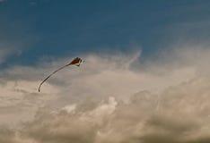 3风筝 免版税图库摄影