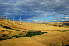风能农场- Washinton状态 库存照片
