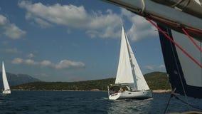 风船参加航行在希腊海岛群中的赛船会第20 Ellada秋天2018年在爱琴海 影视素材