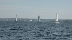 风船参加航行赛船会 股票视频