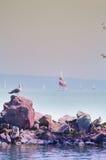 风船在一个大湖 库存图片