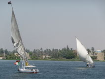 风船在尼罗河 免版税库存图片