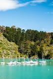 风船在有清楚的水森林和蓝天的港口 免版税库存照片