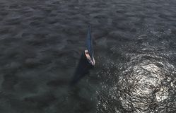 风船 免版税图库摄影