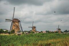 风车和高灌木在一条运河的银行在一多云天在小孩堤防 免版税库存照片