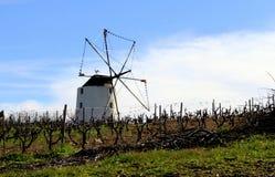 风车在有蓝天的一个葡萄园里 免版税库存照片