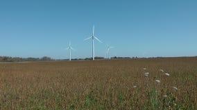 风车,安大略的能源厂,加拿大 股票视频