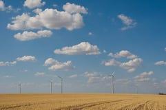 风轮机农厂干净的自由可再造能源创作西部得克萨斯 库存图片