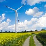 风轮机和油菜领域 免版税图库摄影