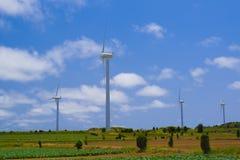 风轮机和领域 库存照片