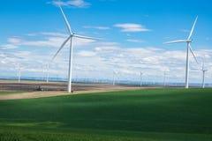 风轮机和麦田在东俄勒冈 库存图片