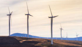 风轮机在哥伦比亚河峡谷 库存照片
