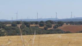 风轮机在西班牙的沙漠 股票视频