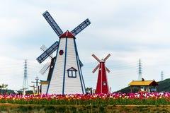 风轮机在郁金香庭院里 图库摄影