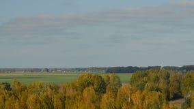 风轮机在Birzai,立陶宛县  在foret后的距离能被看见 影视素材