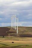 风轮机在Goldendale华盛顿农田里 库存图片