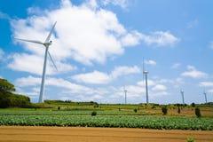 风轮机立场绿色领域 免版税库存图片