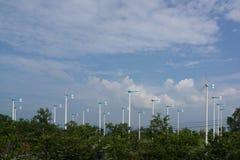 风轮机行发电的 库存照片