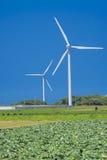 风轮机延长了绿色领域 免版税库存图片
