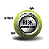 风险管理 免版税库存图片