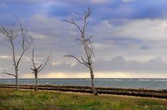 风雨如磐横向的海边 免版税库存图片