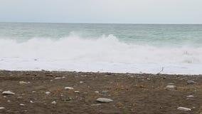 风雨如磐海洋wavw的慢动作 影视素材